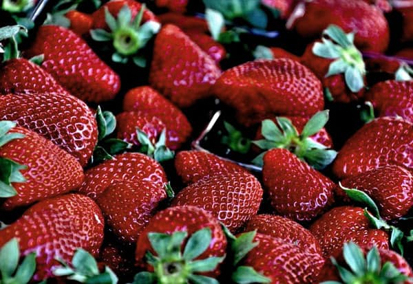 Grow strawberries at home