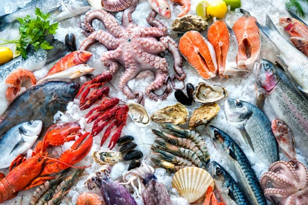 seafood options for lobster ravioli sauce