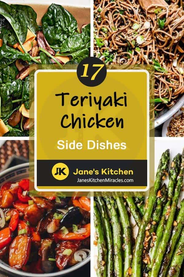 Teriyaki chicken meal pin