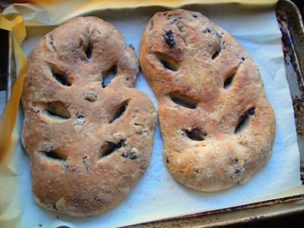 oil cured olive fougasse