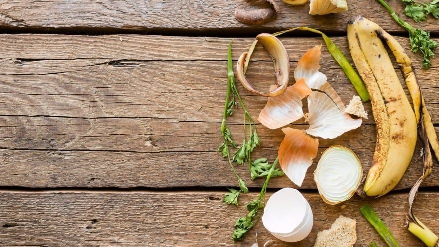 7 Effective Kitchen Waste Disposal Tricks