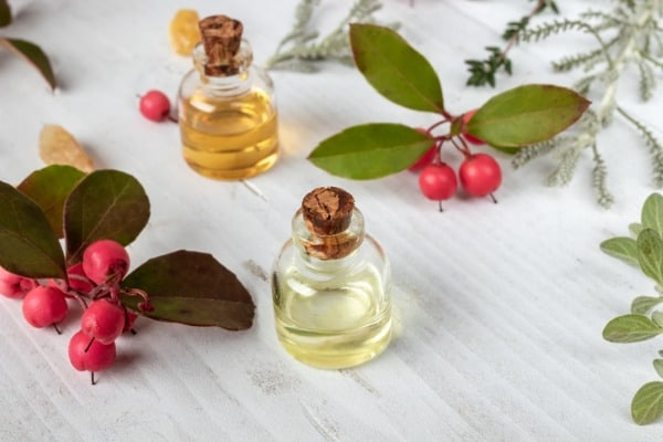 bottles of essential oil with fresh wintergreen leaves