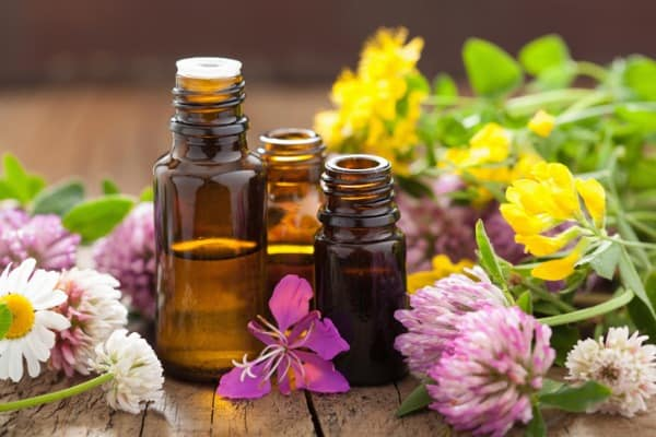essential oils and medical flowers herbs 1