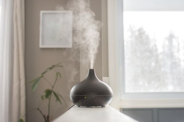 essential oils diffusing at home in the morning light