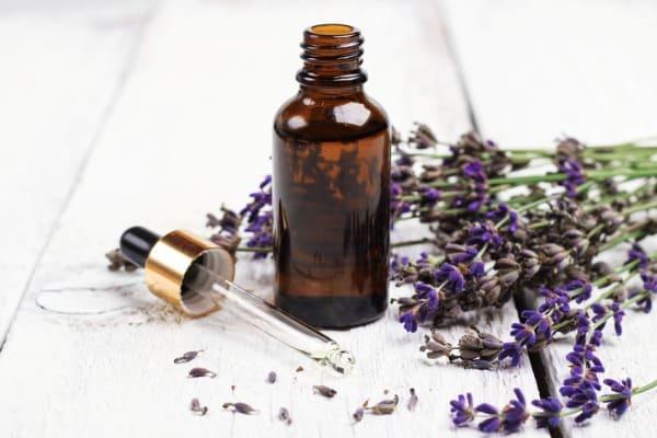 lavender essential oil 1