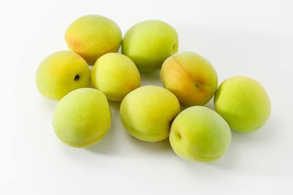 ume is food that starts with U